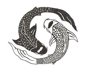 fish, art, and ying yang image