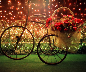 flowers, light, and bike image