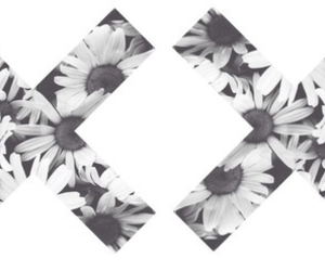 flowers, x, and the xx image