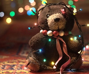 christmas, light, and bear image