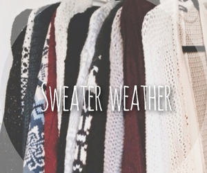sweater, sweater weather, and cold image