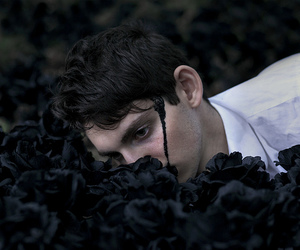 flowers, black, and boy image