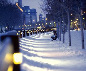 christmas, light, and street image
