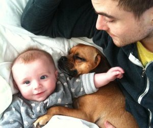 anthony green, baby, and dog image