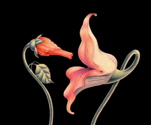 Pink Floyd, flowers, and art image