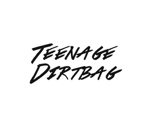 one direction, overlay, and teenage dirtbag image