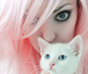 cat, girl, and pink image