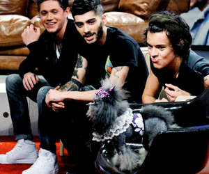 Harry Styles, one direction, and niall horan image