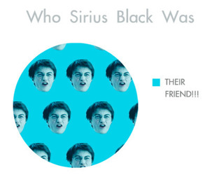 harry potter, lol, and sirius black image