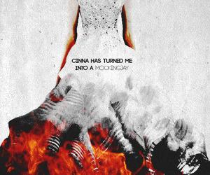 mockingjay, cinna, and katniss everdeen image