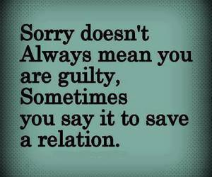 sorry, love, and relation image