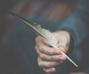 feather, vintage, and indie image