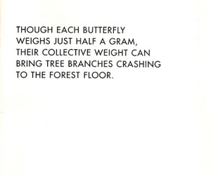 butterfly, quote, and strength image