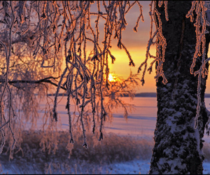 landscape, sun, and beautiful nature winter image