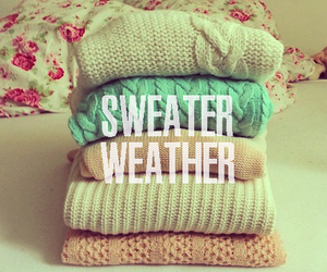 sweater, winter, and pink image