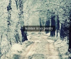 winter, snow, and pretty image