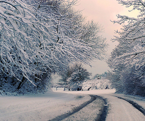 snow and beautiful image