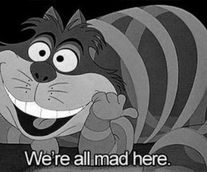 alice in wonderland, black and white, and cat image