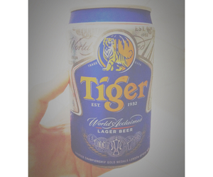 beer, drinks, and tiger image
