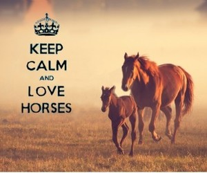 horses, love, and keep calm image