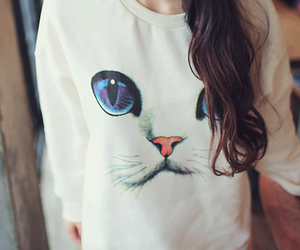 kitty, style, and cat image
