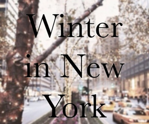 winter, new york, and christmas image