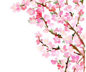 art, cherry blossom, and draw image