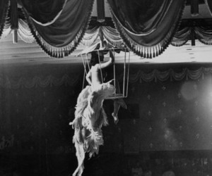 cage and circus image