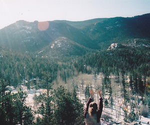 photography, forest, and hipster image