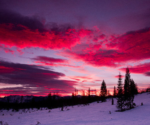 pink, snow, and sky image