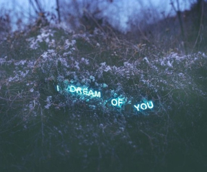 Dream, you, and quotes image