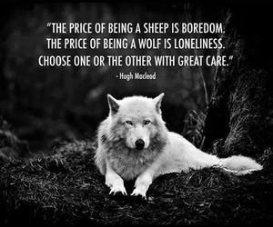 photography, quote, and wolf image