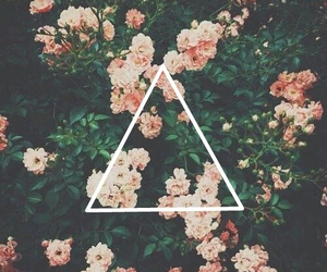 triangle, flowers, and hipster image