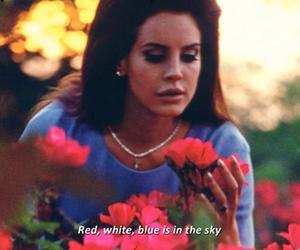 lana del rey, vintage, and national anthem image