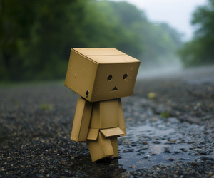danbo and rainy days image