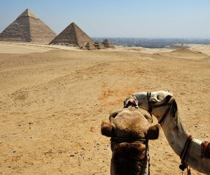 egypt lovers image