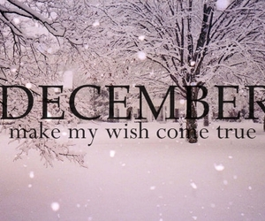 december, wish, and snow image