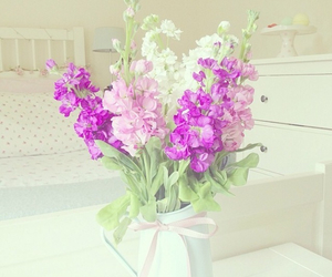 flower, white, and girly image