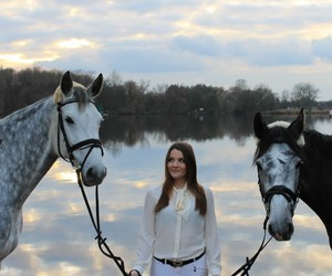 dressage, equestrian, and horses image
