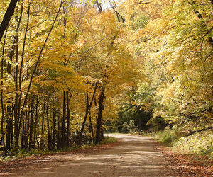 autumn and maplewood state park image