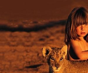 nature, animal, and wild image