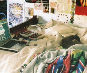 room, cat, and hipster image