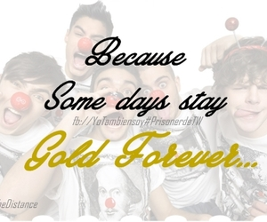 gold, the wanted, and texto image