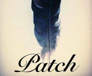 patch, hush hush, and angel image