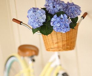 hydrangea, basket, and flowers image