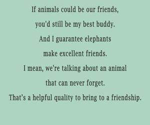animals, friend, and funny image