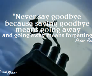 goodbye and peter pan quotes image