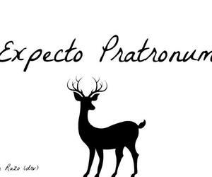 always, black, and expecto patronum image