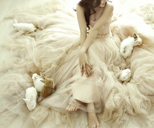 bunny, dress, and rabbit image
