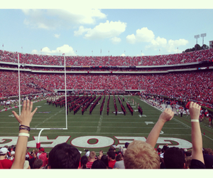 football, uga, and university of georgia image